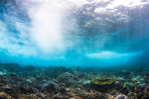 Underwater Turbulence
