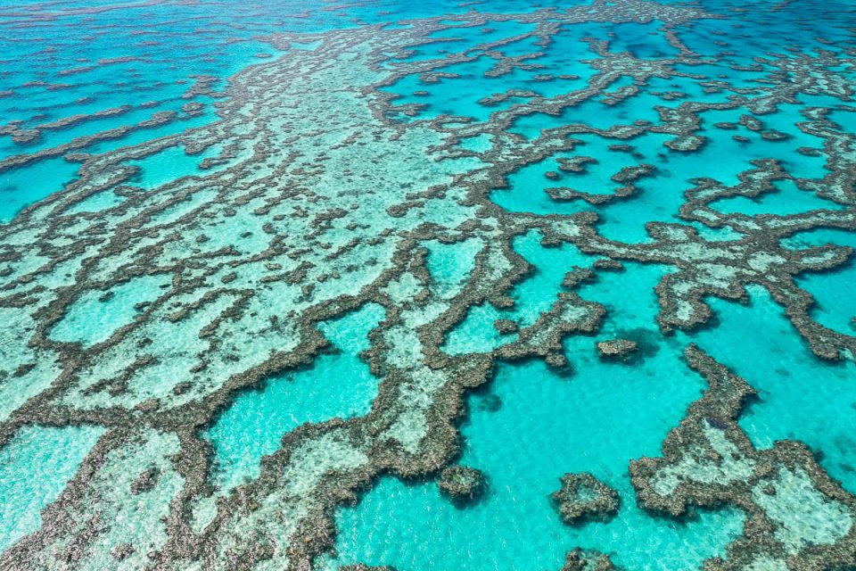 Great Barrier Reef-ES0A3744-1200 x 800