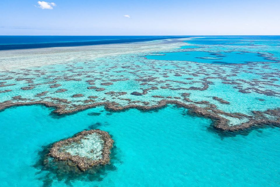 Great Barrier Reef-ES0A3823-2-web-1200 x 800