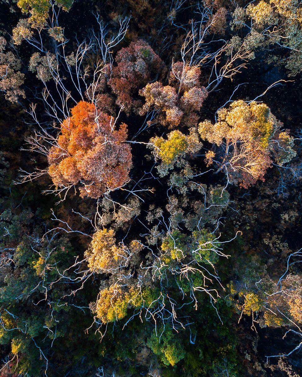 Landscapes-DJI_0047 3-960 x 1200